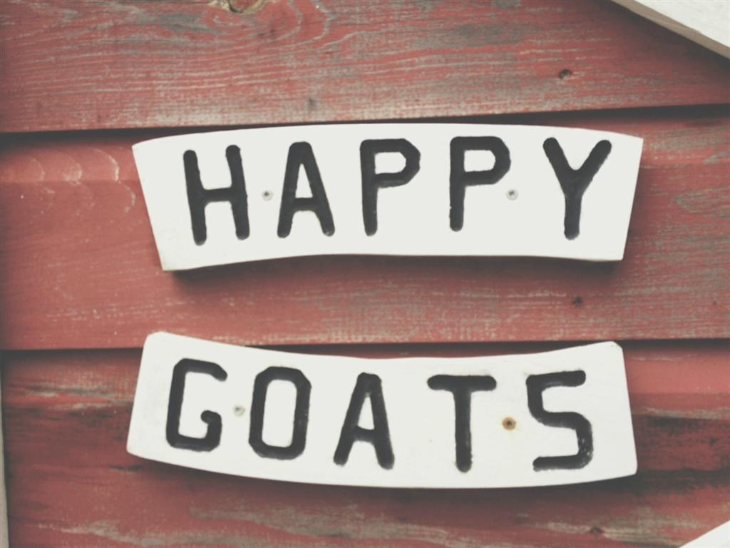 happygoats (Large)