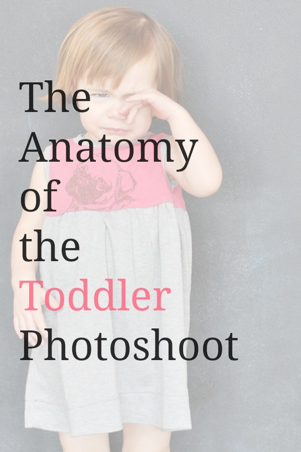 anatomy of a toddler photoshoot